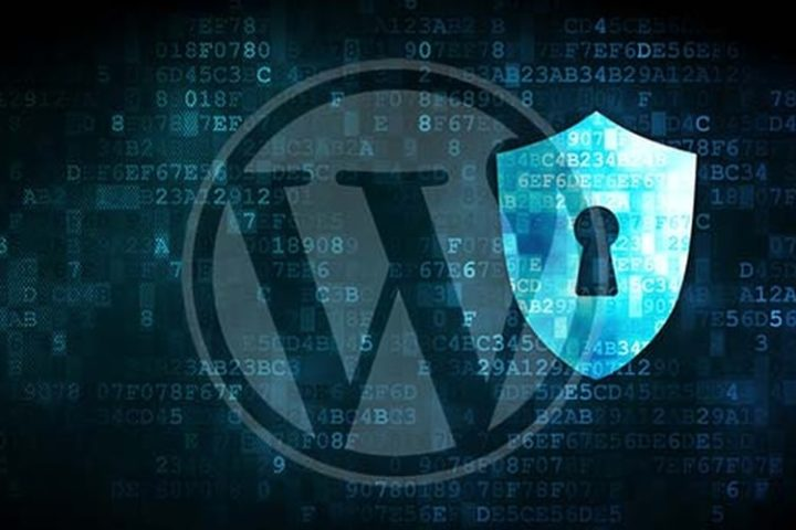 WordPress Admin Password Reset Vulnerability