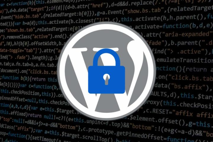 Fight Fraudulent Transactions on WordPress & Protect Your Website