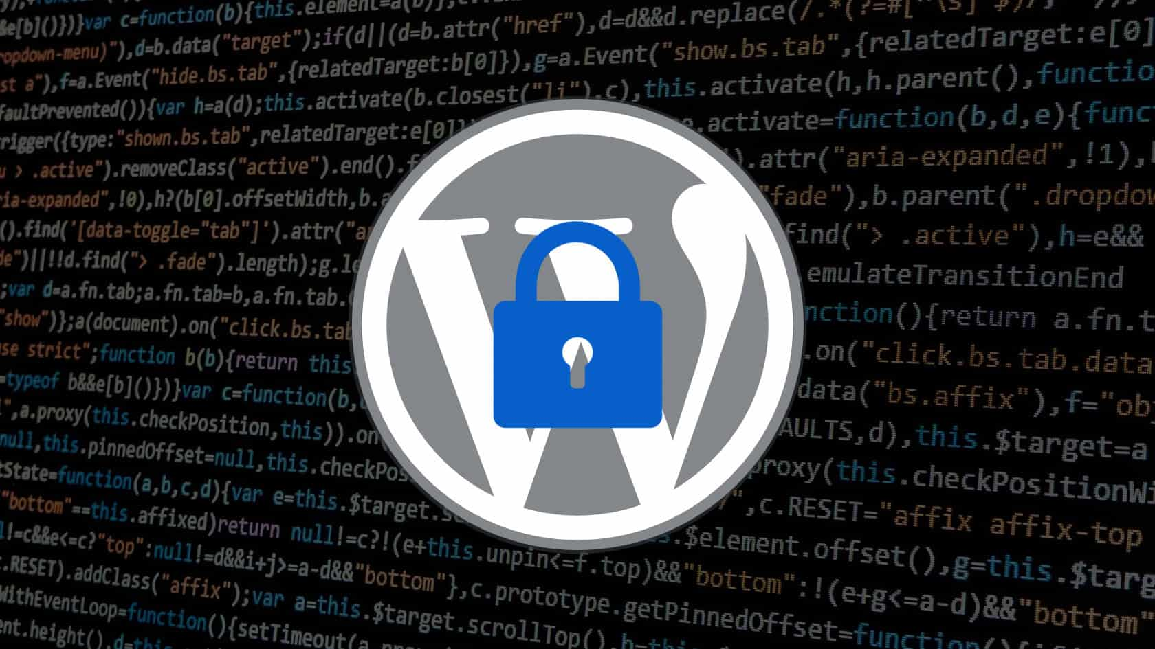 fight fraudulent transactions on WordPress