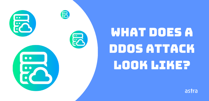 What Does a DDoS Attack Look Like?
